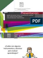 PE PDL1 Técnicas e Instrumentos