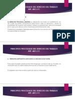 Principios Procesales Del Derecho Del Trabajo (1)