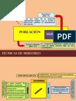 TECNICAS-DE-MUESTREO-pptx.pptx