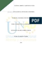 RICARDO ANDRES APARICIO UNAD iNTRODUCCION A LA INGENIERIA.docx