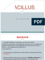 Bacillus s.g Cap21