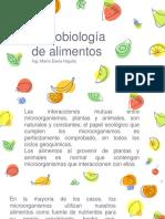 Conceptos de Microbiologia