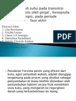 yersinia pestis ppt.pptx