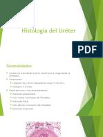 Histología del Uréter.pptx