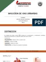 Infeccion Vias Urinarias 2