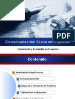 Conceptualizacion Basica de Proyectos