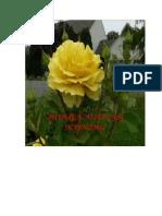 Mawar kuning.docx