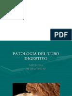Digest Ivo 1