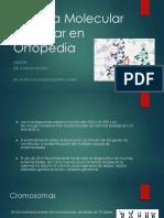 1 Biologia Molecular y Celular en Ortopedia