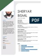 Resume in progress.docx