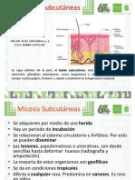 4. MICOSIS INTERMEDIAS