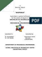 biofuels Report.pdf