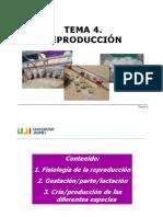 Tema 4. Reproduccion.pdf
