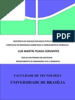 Tese Lucho v.0.1.pdf