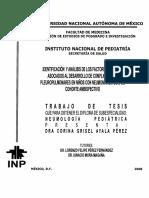 tesis2008_53.pdf