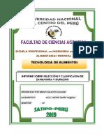 INFORME SOBRE  SELECCION Y CLASIFICACION DE ZANAHOORIA Y DURAZNO.docx