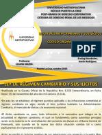 Exposición Penal Corporativo.pptx