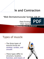 (K8-K9) Muscle Contraction
