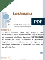 Leishmania Parasitologia