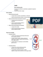 Constituição do sistema cardiovascular.docx