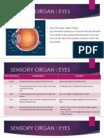 Food Science .Sensory Organ