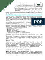 1CI-GU-0002 GUÍA PARA REALIZAR AUDITORÍAS INTERNAS.docx
