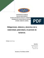 Obligaciones, Deberes y Derechos de La Maternidad, Paternidad y El Periodo de Lactancia.