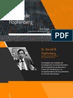 Modelo Hopfenberg