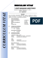 Curriculum Jaime Mamani Arestides