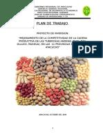 PLAN DE TRABAJO PI TUBEROSAS (1).docx