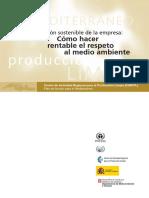 pymes_cast.pdf