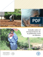 2 Estudio sobre el envejecimiento de la población rural en México.pdf