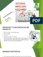 aquambu.pptx