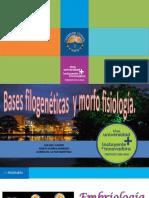 BASES FILOGENÉTICAS Y MORFOFISIOLOGÍA