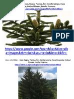 Imagini Plante Terapeutice