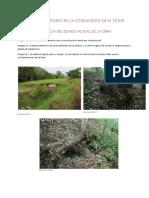 DRENAJE SANITARIO EN LA COMUNIDAD DE EL OTATE.docx