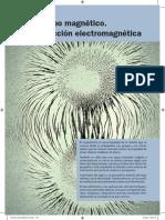 Física 2BA. Unidad 5. Campo Magnético. Inducción Electromagnética