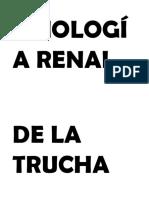 FISIOLOGÍA RENAL DE LA TRUCHA.docx