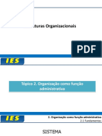 Aula Estruturas Organizacionais_Tópico 2.pdf