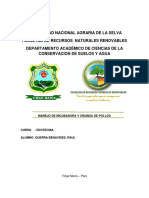 7. DIA Del Proyecto de Explotacion Minera Rio Seco - Lev. de Observaciones