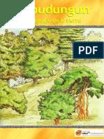 mapudungun-el-lenguaje-de-la-tierra.pdf