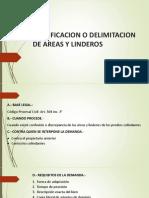 Clase 6- Rectificacion o Delimitacion de Areas y Linderos