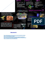 FABIAN_EDUARD_INFOGRAFIA 02_00.pdf