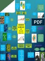Mapa Mental Evolucion de Los Seres Vivos