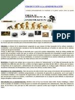 HISTORIA ADMINISTRACIÓN.docx