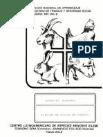 curtido_pieles_conejo.PDF