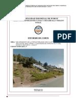 Informe Situacional - Cruz Verde -2019 Ultimo