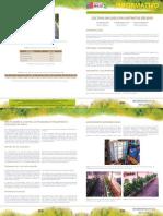 Cultivos sin suelo en sustratos solidos.pdf