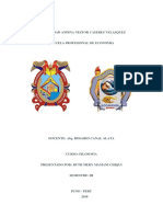 UNIVERSIDAD ANDINA NESTOR CASERES VELASQUEZ.docx