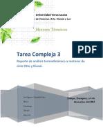 EL ARROZERO 1.1.docx